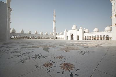 Sheikh Zayed Mosque (2) Аlpha 900, 16-35/2.8