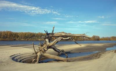 Фантазии природы Река мелководье Тавда