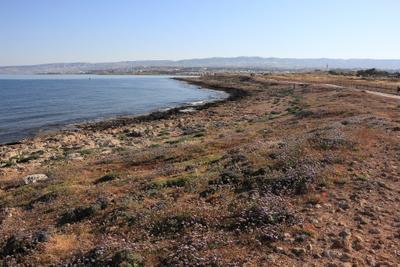 *** побережье Кипра