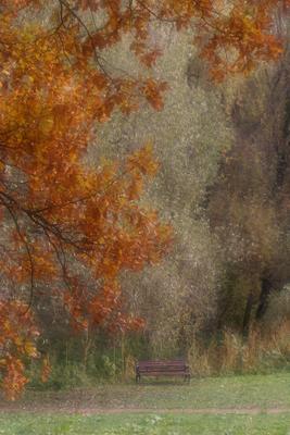 Ожидание Осень парк