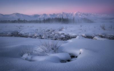 Курайские зори алтай горный горы кош-агачский район северо-чуйский хребет курайская степь курай зима февраль мороз снег утро рассвет заря лес ели иней туман