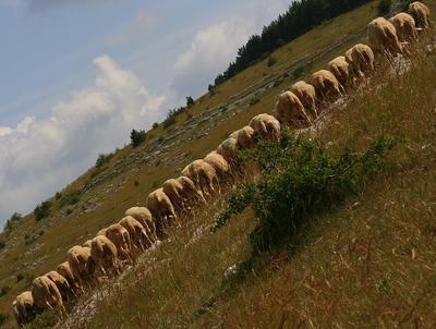Простая сельская диагональ село Сербия