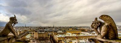Химеры Парижа париж европа франция нотр дам химеры горгулии