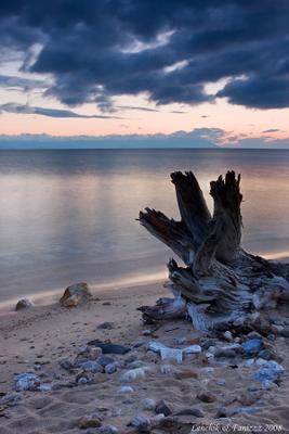 \\  // Lenchik & Fanizzz, озеро Байкал, остров Ольхон, утро, перед рассветом, старое дерево, коряга