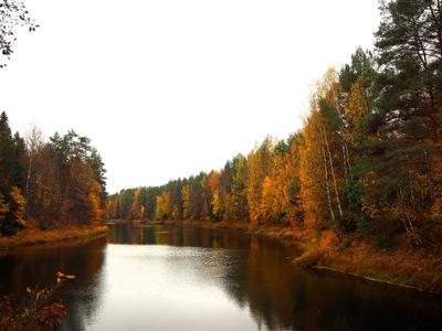 Осенняя речка осень речка