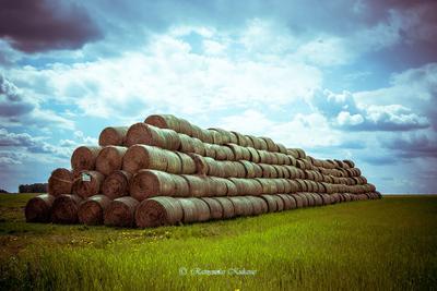 Hard rock природа Пейзаж поле