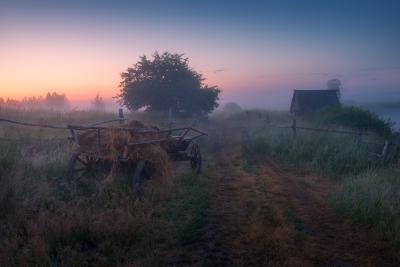 Туманная дорога туман утро деревня телега дорога рассвет