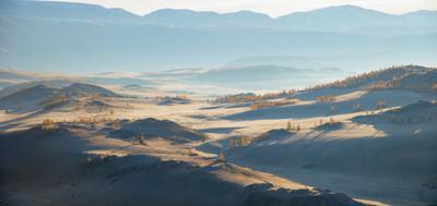 Утро в Курайской степи Утро степь Алтай