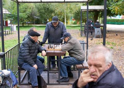 Площадка для шахматных баталий шахматы