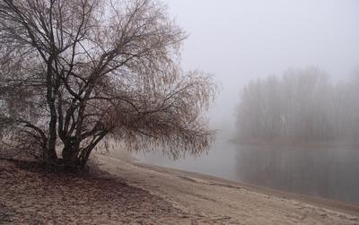 ***** ноябрь туман осень река