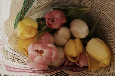 Цветы, которые не мне....