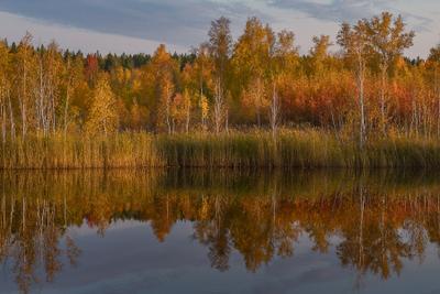 Вечер золотой осени