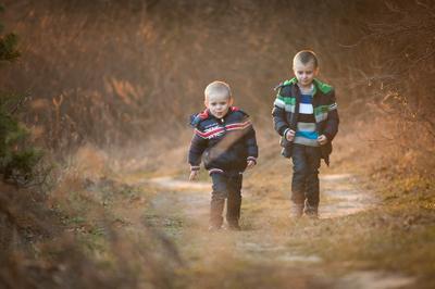 *** дети мальчики лес прогулка