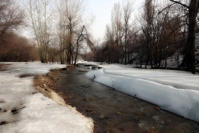 Март. Весновка. Весна город Алматы