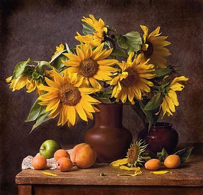 Подсолнухи цветы , подсолнухи