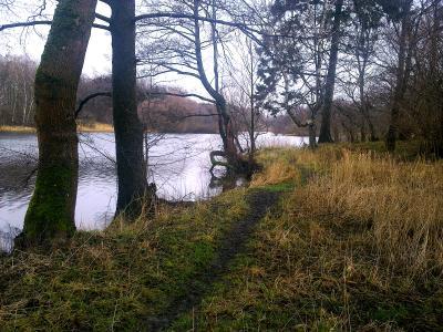 Знакомой тропой на рыбалку.... озеро рыбалка отдых тишина поплавок
