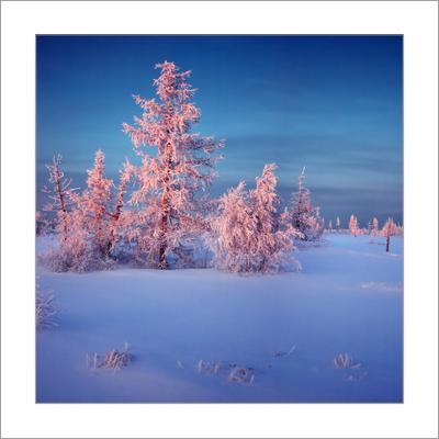 Зимний квадрат...(11) зимний квадрат 11 ЯНАО Новый Уренгой
