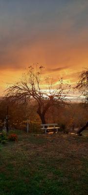 Осенний вечер Лавочка закат деревья осень