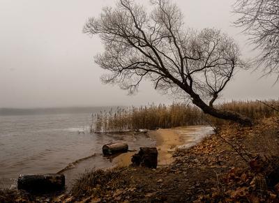 Речной туман река осень туман