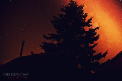 Дача с видом на центр галактики дача, ночь, елка, звезды
