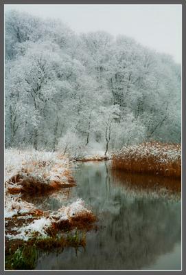 река Сходня.
