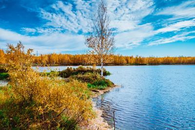 В гостях у осени! (7) Осень Тайга Лес
