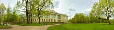 Весна в Михайловском саду. Санкт-Петербург Петербург Питер весна Михайловский замок Русский музей сад панорама