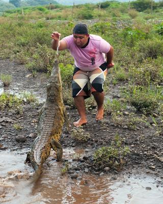 Завтрак для Татоши Коста-Рика крокодил река тарколес природа гид проводник