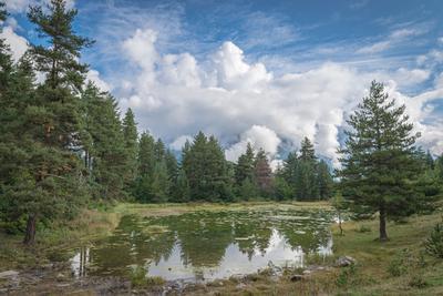 Сванетия. Пейзаж Грузия Сванетия озеро лес облака