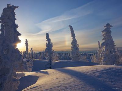 Сибирский мотив сибирь зима солнце снег