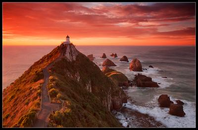 Lighthouse New Zealand