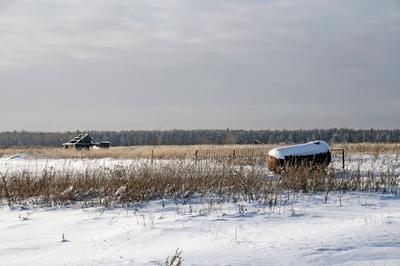 Там, где шепчутся скворечники поле, дом, ветер, снег