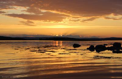 Золотой закат. белое море, море, вечер, закат, золото, небо, свет, пейзаж