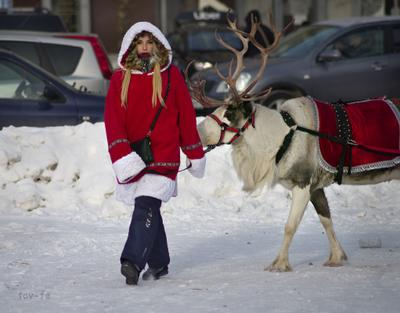 А олени лучше_2 девушка город зима олень Рождество