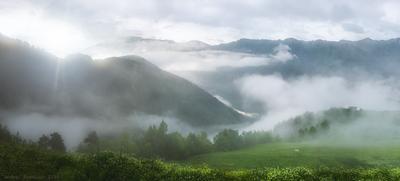 Когда приходит туман