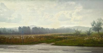 Глоток свежести Небо земля природа лес поле дорога знак дождь