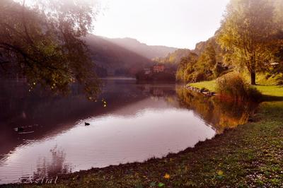 ***Lasse*** озеро, тироль,туман