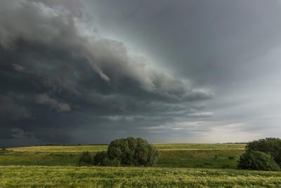 Перед бурей поле лето природа гроза буря погода облака