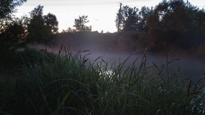 Утренний туман на речке