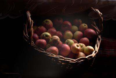 Корзина с яблоками на террасе