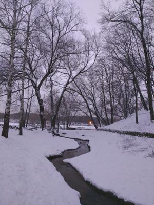 Зимний ручей Коломенское зима ручей зимний пейзаж снежная зимняя река