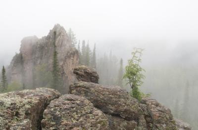 ...Туманное настроение...