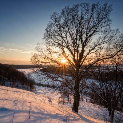 Закат в Бехово. Закат снег мороз изгиб реки