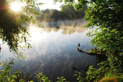 Утро на пруду