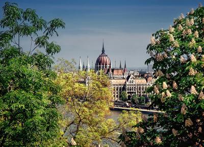 ***Весна  в Будапеште.