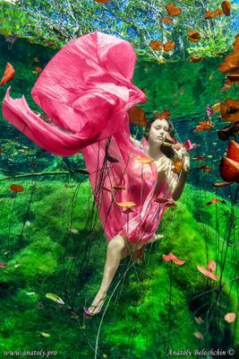 Aktun Ha (подводное фото) Cenote Aktun Ha Mexico Yucatan underwater model Anatoly Beloshchin