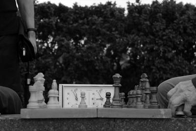 Партия шахматы