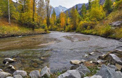 Осенний пасмурный день.. Алматы горы осень