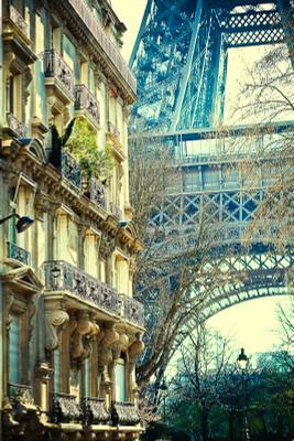 Чтоб я так жил!! Эйфелева башня Париж