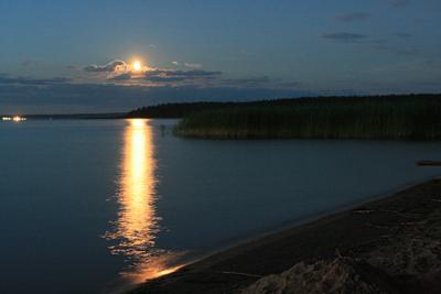 Лунная ночь была,тёплая как зола
